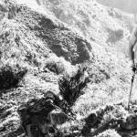Como me preparo para una carrera de trail destacada