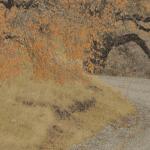 Viajar en bici alforjas o bikepacking destacada